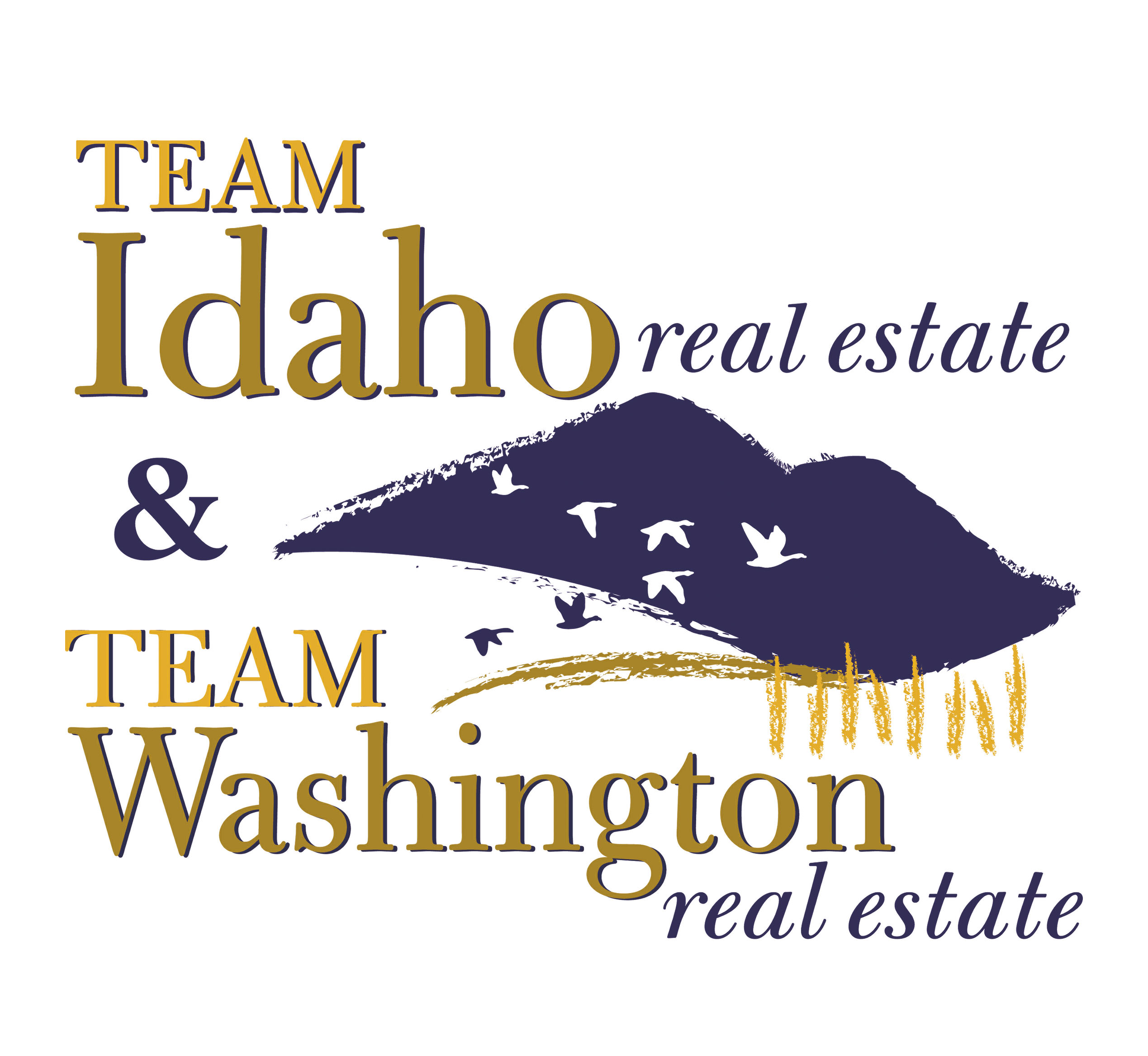Team Idaho Real Estate